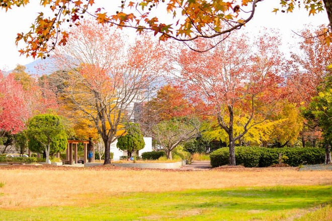 Khi hậu dịu mát đặc trưng của mùa thu