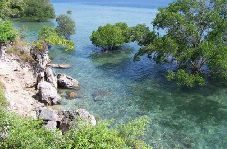 Công viên quốc gia Bali Barat