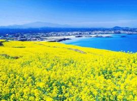 Vé máy bay giá rẻ đi Nhật Bản ngắm hoa cải dầu