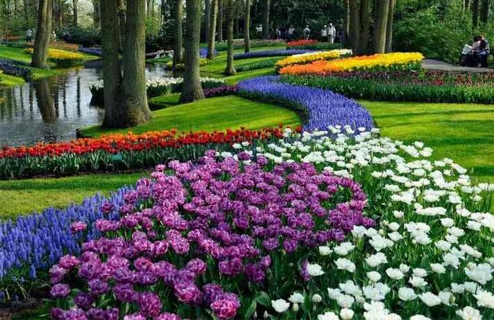 Lễ hội hoa ở Charleston ở Mỹ