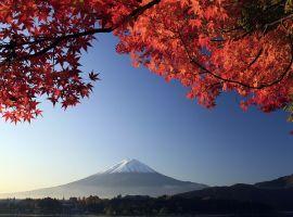 Vé máy bay khuyến mãi tham quan lễ hội mùa thu ở Nhật Bản