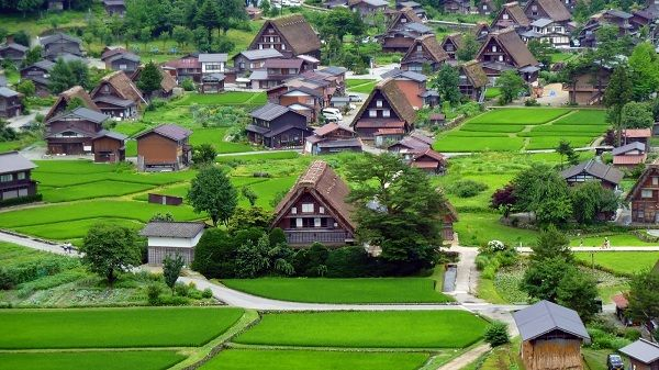 Làng Shirakawa-go và Gokayama