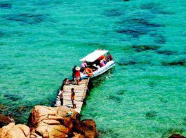 Vé máy bay Hà Nội Quy Nhơn