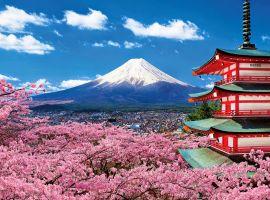 Du lịch Nhật Bản – Hành trình khám phá xứ sở hoa anh đào tuyệt đẹp